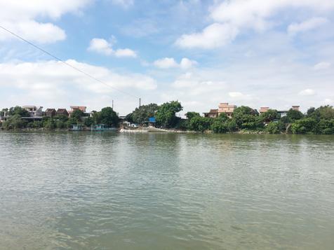 大王洲樟村渡口风景图