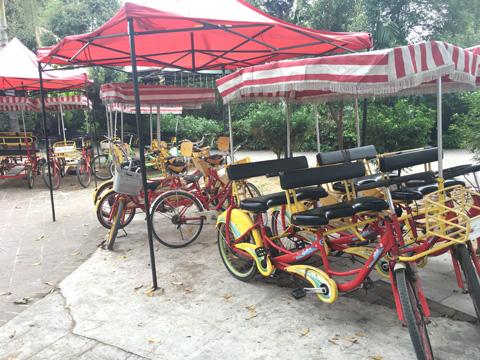 东莞市大王洲岛自行车租赁费用规则